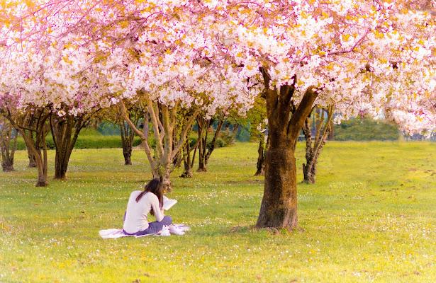 Hobby di primavera di Valentina D.