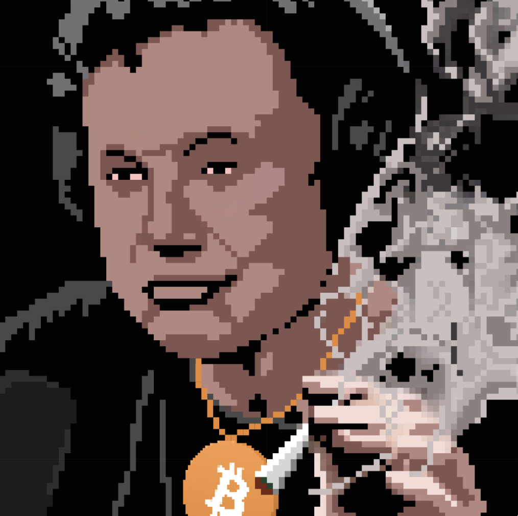CEO of Pointpay Sells Two NFT Tokens With Elon Musk Memes for m 2021