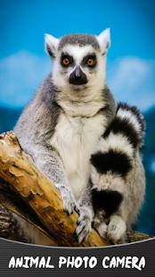 Živočišná fotografická kamera - náhled