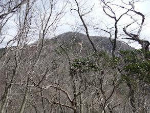 入道ヶ岳山頂へ