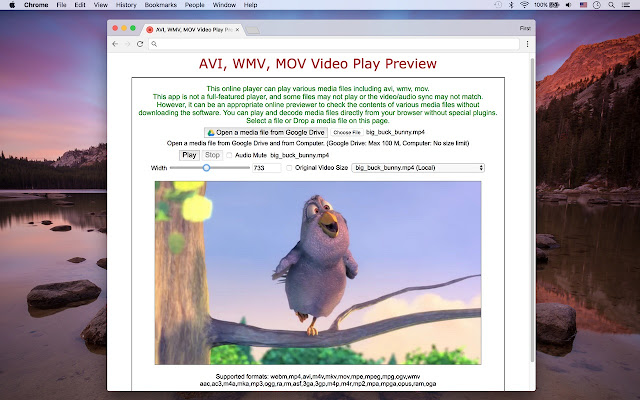 play wmv in browser