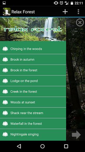 放宽森林 - 大自然的声音