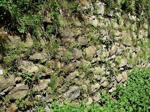 Photo: caratteristico muro a secco