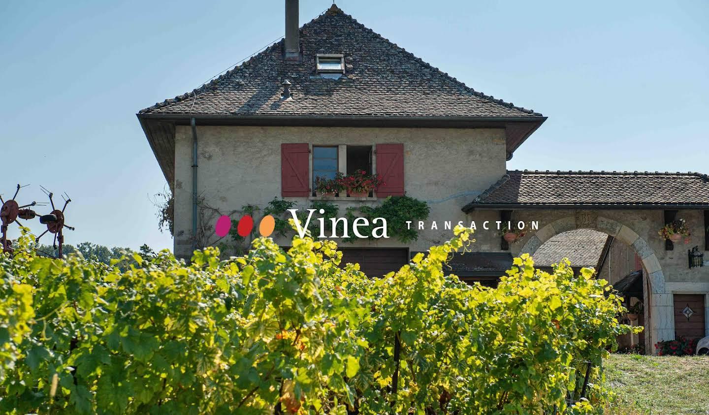 Vignoble avec dépendances Haute-Savoie