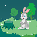 Rabbit Bubbles Shooter APK
