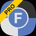 Team Formula Pro 2017 icon