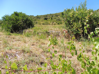 terrain à Roquebrun (34)