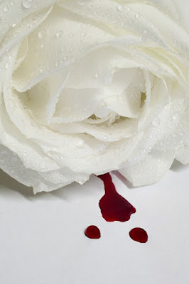 Lacrime e sangue. di Paolo Zanoni