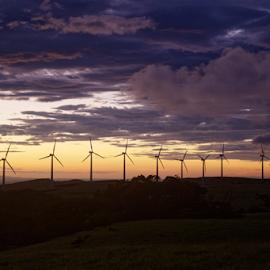 eólicas de tierras morenas by Annette Flottwell - Landscapes Sunsets & Sunrises ( atardecer, luz, noviembre, renewable energy, windmills, viento, sunset, guanacaste, tierras morenas, clouds, eolicas, nubes )
