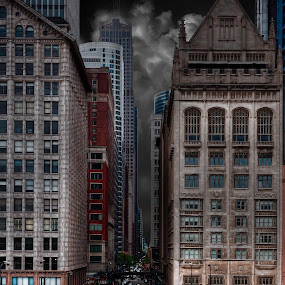 Chicago before the storm by William Underwood  - Buildings & Architecture Office Buildings & Hotels ( chicogo flowers susan )