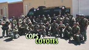 Cops & Coyotes thumbnail
