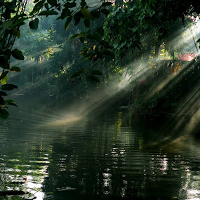 THE LIGHT FROM HEAVEN by Arunava Das - City,  Street & Park  Vistas