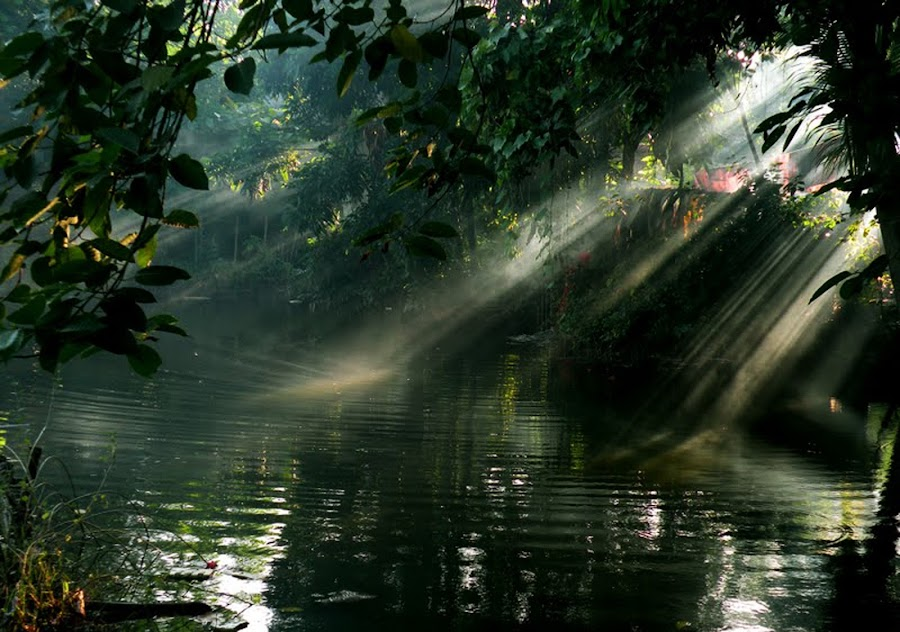 THE LIGHT FROM HEAVEN by Arunava Das - City,  Street & Park  Vistas