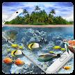 Aquarium Dolphin HD Wallpaper APK