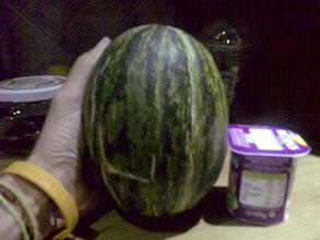 Photo: ¡melones para singles, tan pequeños como un par de yogures!. Cosecha de mi padre, diseño para la vida moderna ;-)