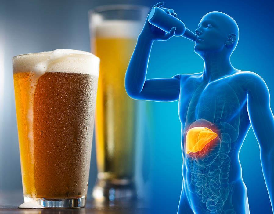 beer and liver