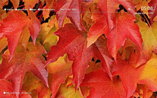 Autumn Season Wallpaper HD New Tab Theme