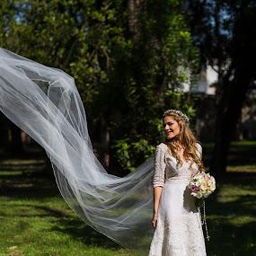 wind by Jorge Asad - Wedding Bride ( love, ellegance, wedding, outdoor, sunshine, bride )