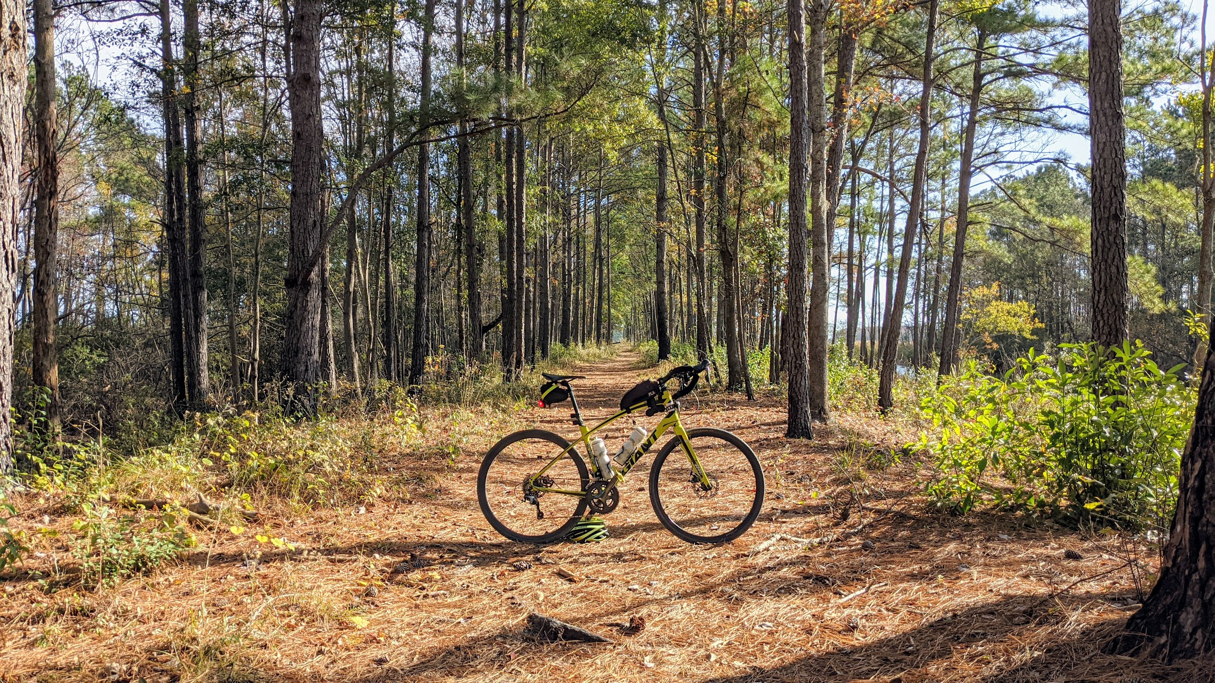 image from West Dike Lake Moultrie