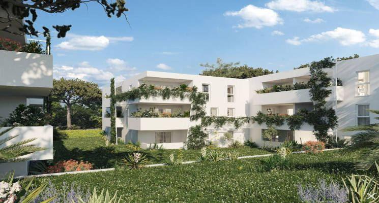 Montpellier au coeur du Mas de Bagnère