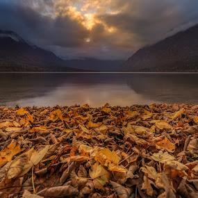 Autumn Bohinj VIII by Bor Rojnik - Landscapes Sunsets & Sunrises ( clouds, reflection, national park, autumn leaves, sunset, landscape photography, lake, tranquility, autumn colors, landscape, close up, bohinj )