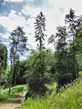 Photo: Am Baumwipfelpfad bei Prora