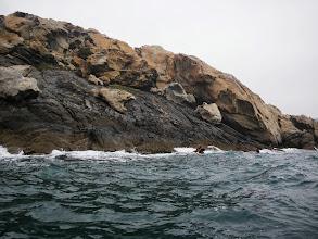 Photo: René Valner dans ses oeuvres : il va aller faire toucher la pointe avant à 2 m de haut dans les rochers !