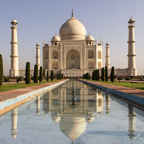 Taj Mahal by Amit Aggarwal - Buildings & Architecture Public & Historical ( water, marble, reflection, graves of love, symbol of love, taj mahal, white, agra, india, beauty, amit aggarwal,  )
