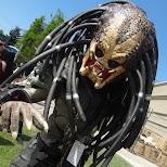 Predator at Anime North 2014 in Mississauga, Ontario, Canada