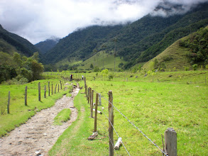 Photo: The first leg of the hike is through the gorgeous Valle De Cocora.