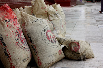 Photo: Year 2 Day 54 - Elephant Cement Bags in the Temple