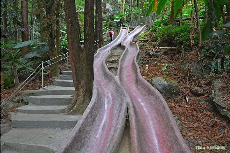 鳳凰谷鳥園森林溜滑梯