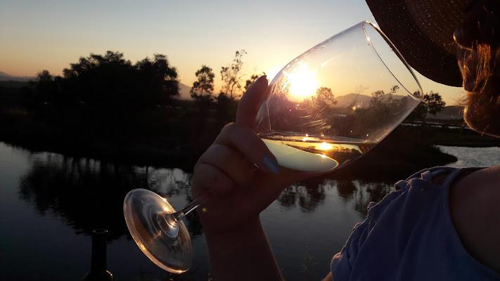 Un sorso di vino... di Giovanna_Tamponi