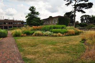 Photo: grassenborder Kew - Royal Botanical Gardens