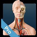 Anatomy Game Anatomicus Pro icon