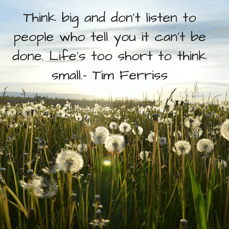 """awesome quote by Tim Ferris over image featuring a field of daisies, """"think big"""""""