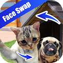 Face Detection Swap icon