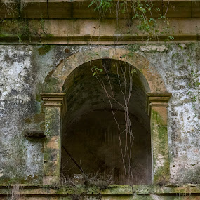 Mosteiro de Seiça by Edu Marques - Buildings & Architecture Decaying & Abandoned ( old house, old, ancient, ruin, ruins, landscape )