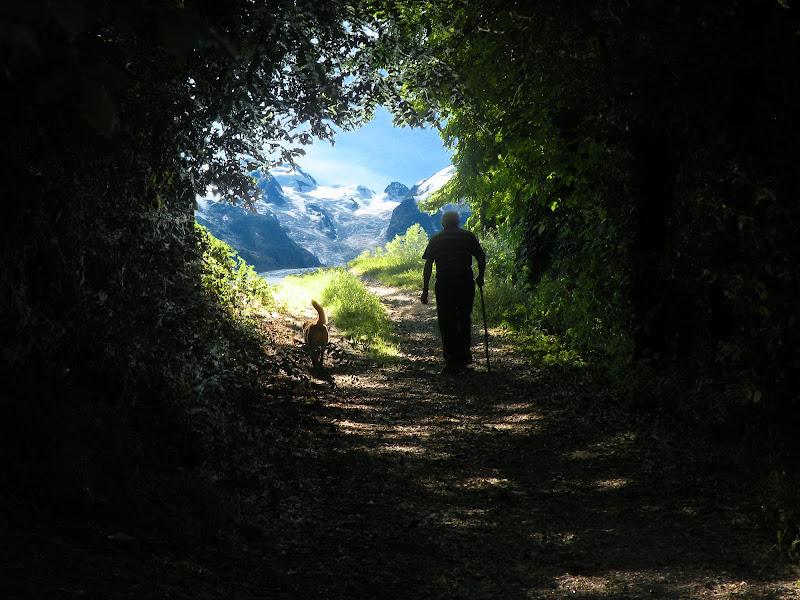 Lentamente in cammino, sul sentiero verso il paradiso di GabrieleT