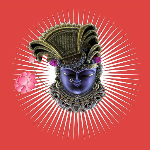 Shreenathji Zankhi