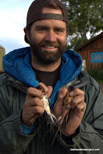 Photo: Georgy's photo: Matt holds an H. r. rustica (left) and H. r. tytleri (right) in the hybrid zone