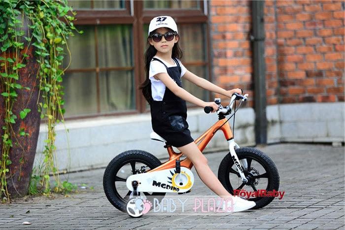 Xe đạp trẻ em Royal Baby MgDINO RB14-B21 1