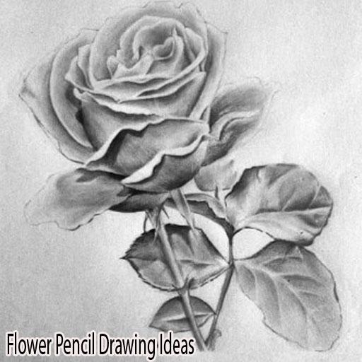 Flower Pencil Drawing Ideas 4.0 screenshots 1