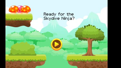 Skydiver Ninja