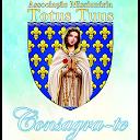 Associação Totus Tuus APK