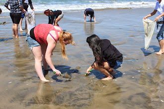 Photo: Searching for the crabs!