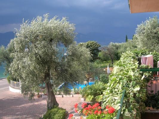 Riflessi di rainwind