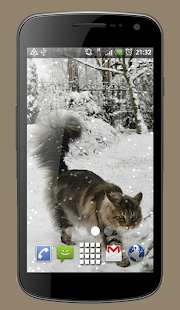 Cat in Snow Live Wallpaper Theme - náhled