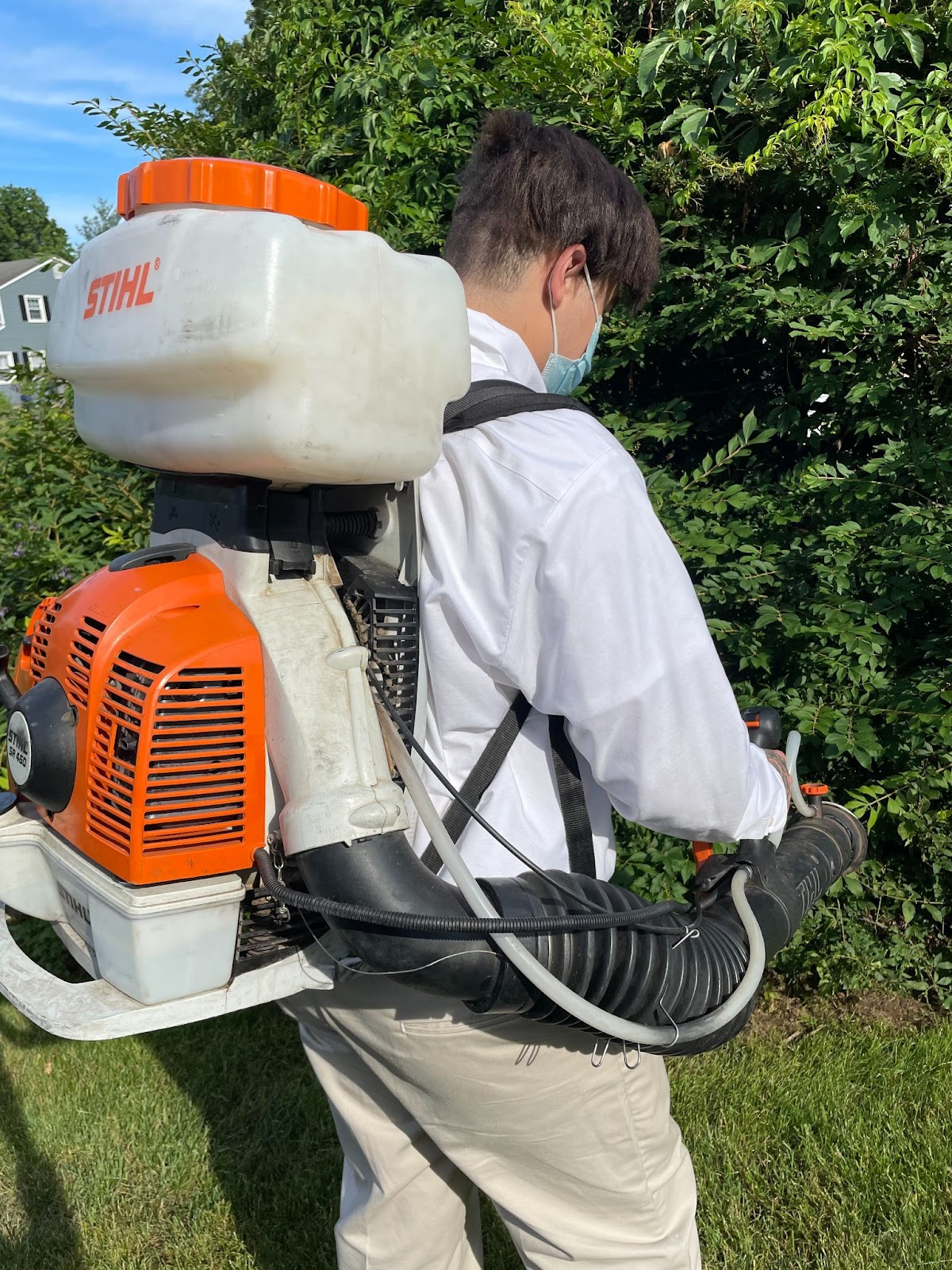 Modern Pest Services summer yard protection New England