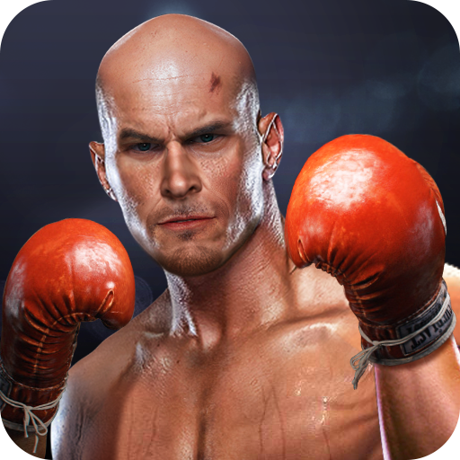Boxing Fight - Real Fist (game)